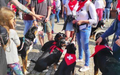 Parada Ras Szwajcarskich
